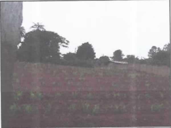 ITEM Nº: 113; ITATIAIUÇU; Terreno, 938,25m2 de área do terreno.     B. PARQUE DO LAGO, RU