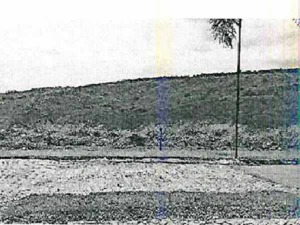 ITEM Nº: 102; GUAPÉ; Terreno, 1194m2 de área do terreno.     RUA UM, QD 02 LT 51, REGIÃO