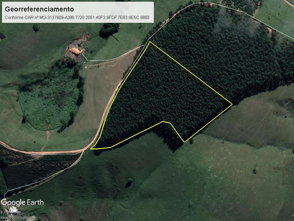 Lambari - Terreno rural com 3,00hectares,  Lugar denominado Piripau, s/nº, São Bartolomeu,...