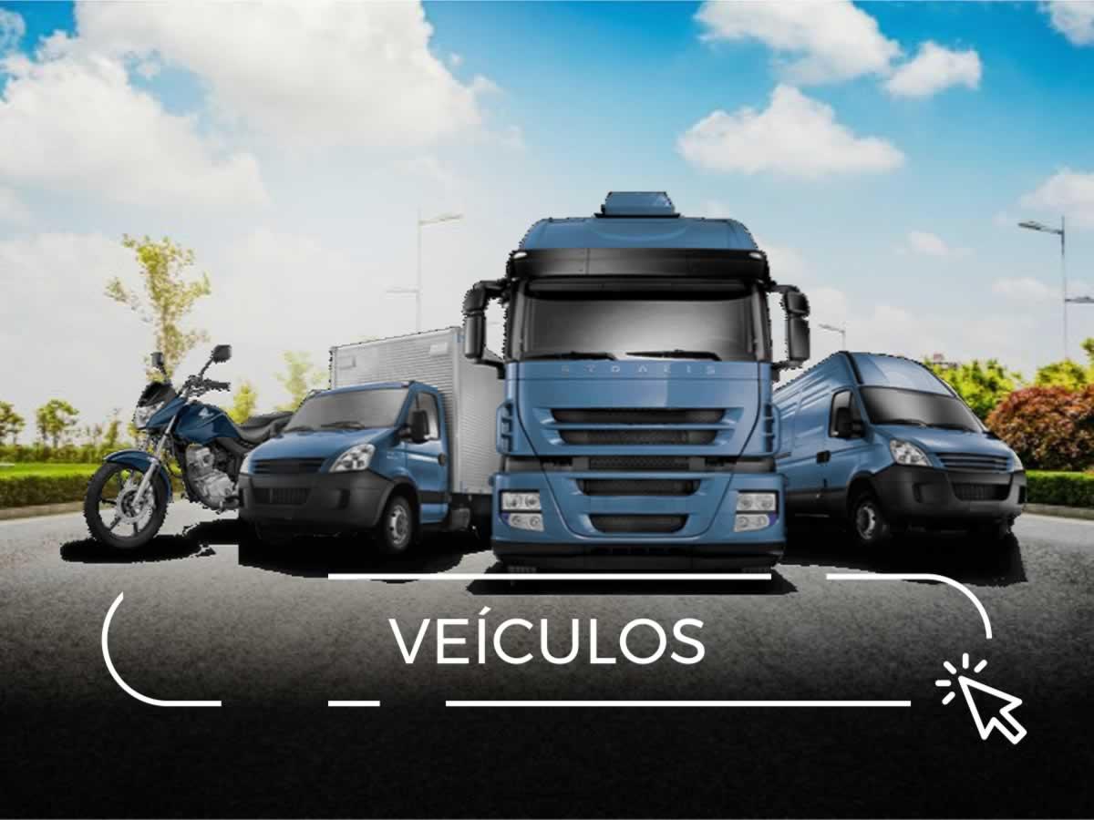 Leilões de Veículos